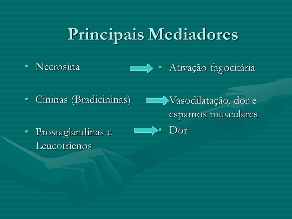 Principais Mediadores