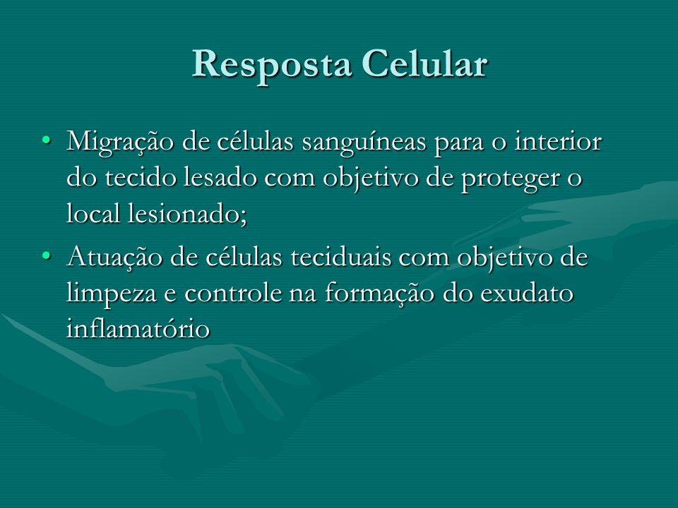Resposta Celular Migração de células sanguíneas para o interior do tecido lesado com objetivo de proteger o local lesionado;