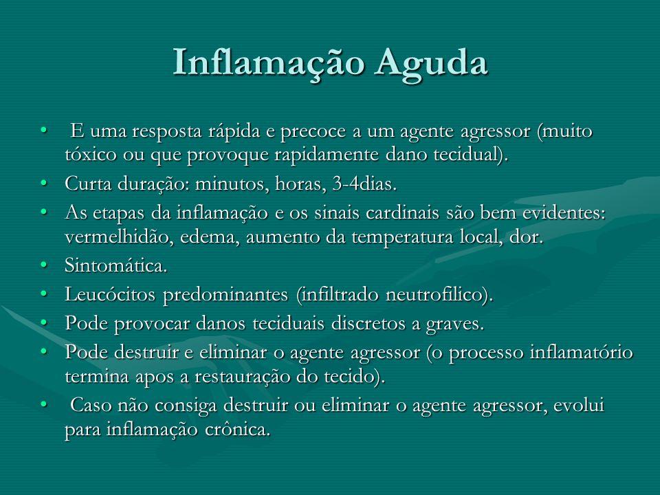 Inflamação Aguda E uma resposta rápida e precoce a um agente agressor (muito tóxico ou que provoque rapidamente dano tecidual).