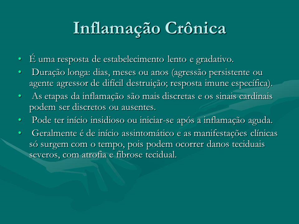 Inflamação Crônica É uma resposta de estabelecimento lento e gradativo.