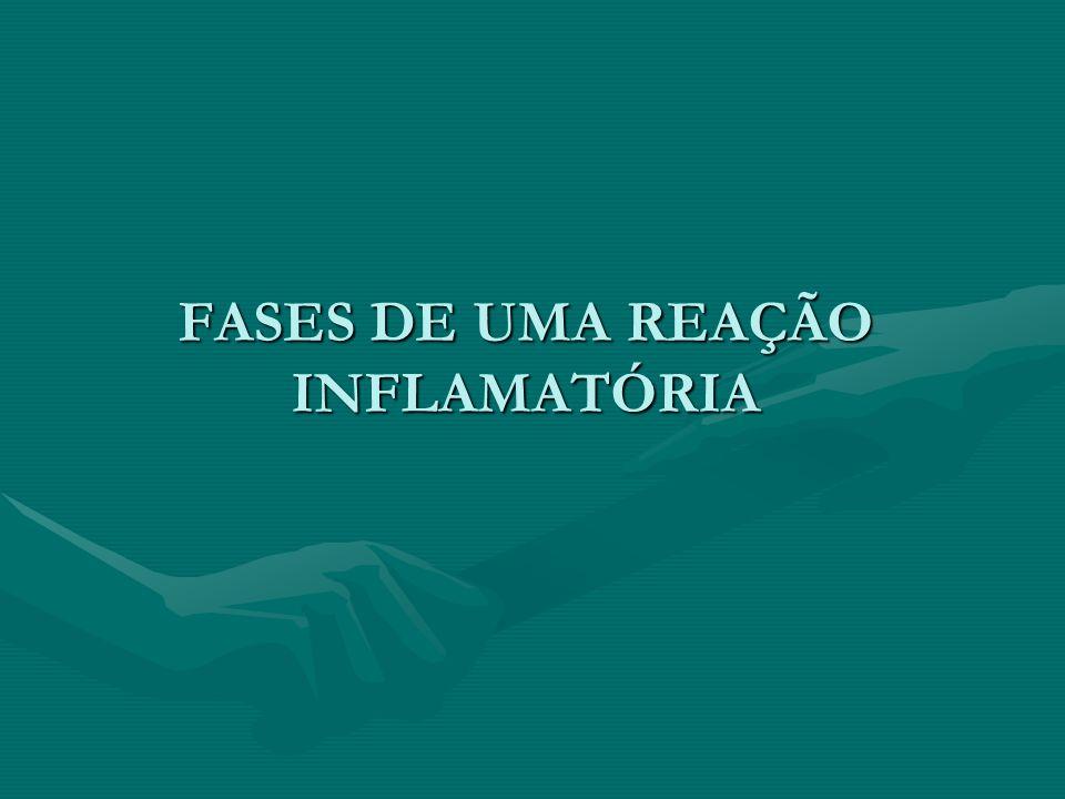 FASES DE UMA REAÇÃO INFLAMATÓRIA