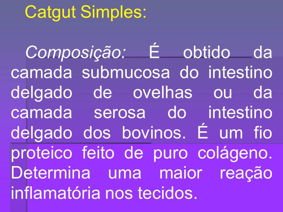 Catgut Simples: