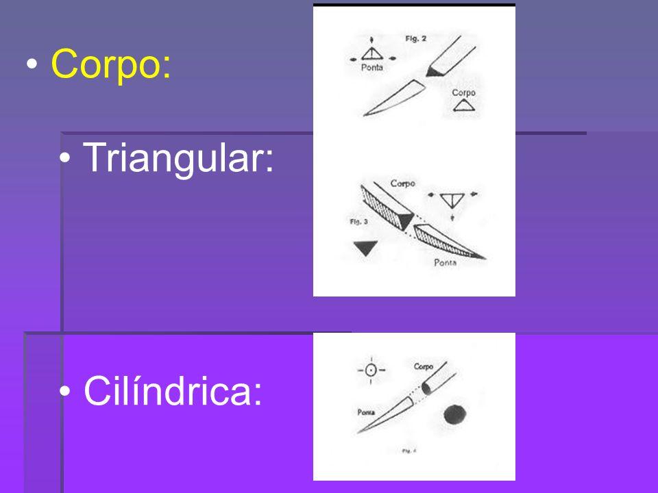 Corpo: Triangular: Cilíndrica: