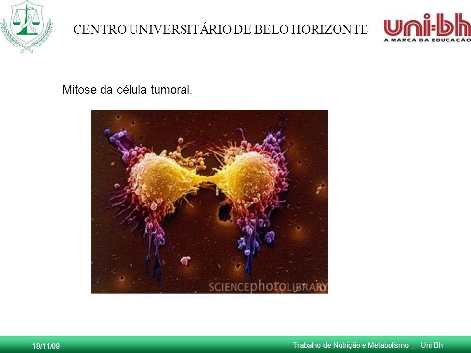 Mitose da célula tumoral.