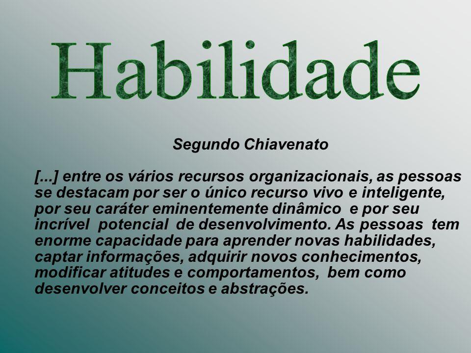 Habilidade Segundo Chiavenato