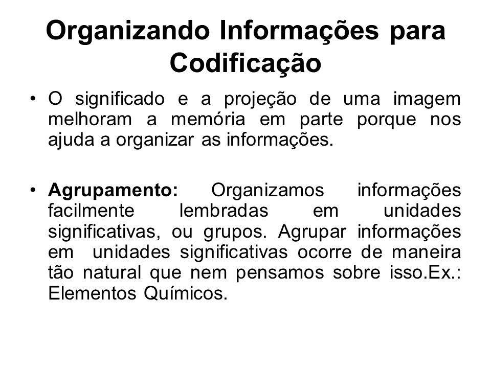 Organizando Informações para Codificação