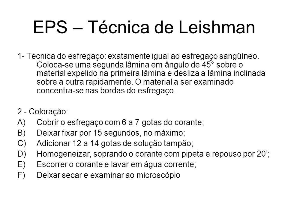 EPS – Técnica de Leishman