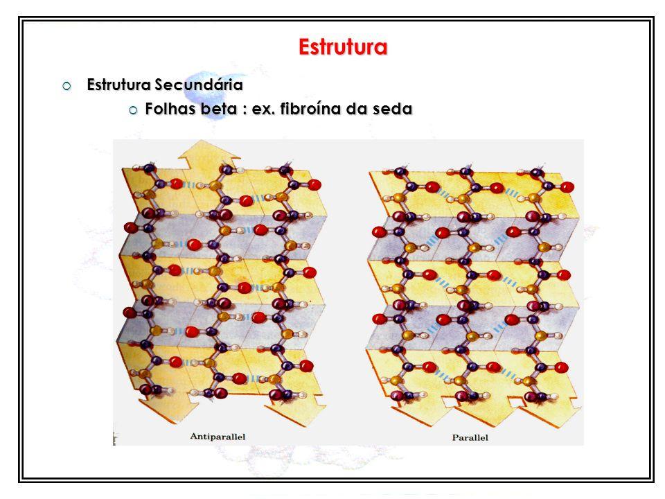 Estrutura Estrutura Secundária Folhas beta : ex. fibroína da seda