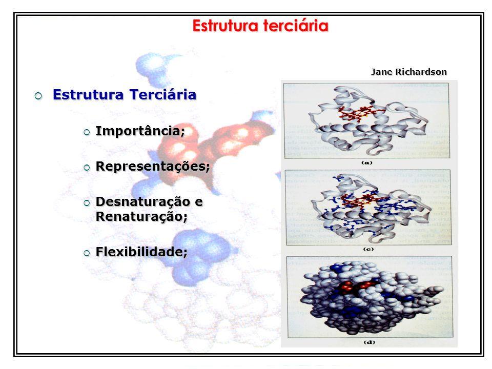 Estrutura terciária Estrutura Terciária Importância; Representações;