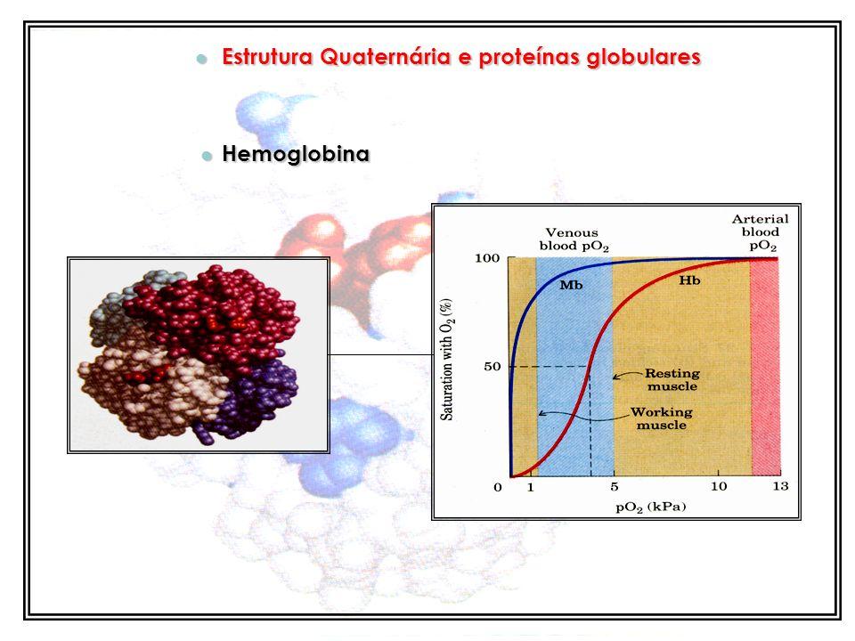 Estrutura Quaternária e proteínas globulares