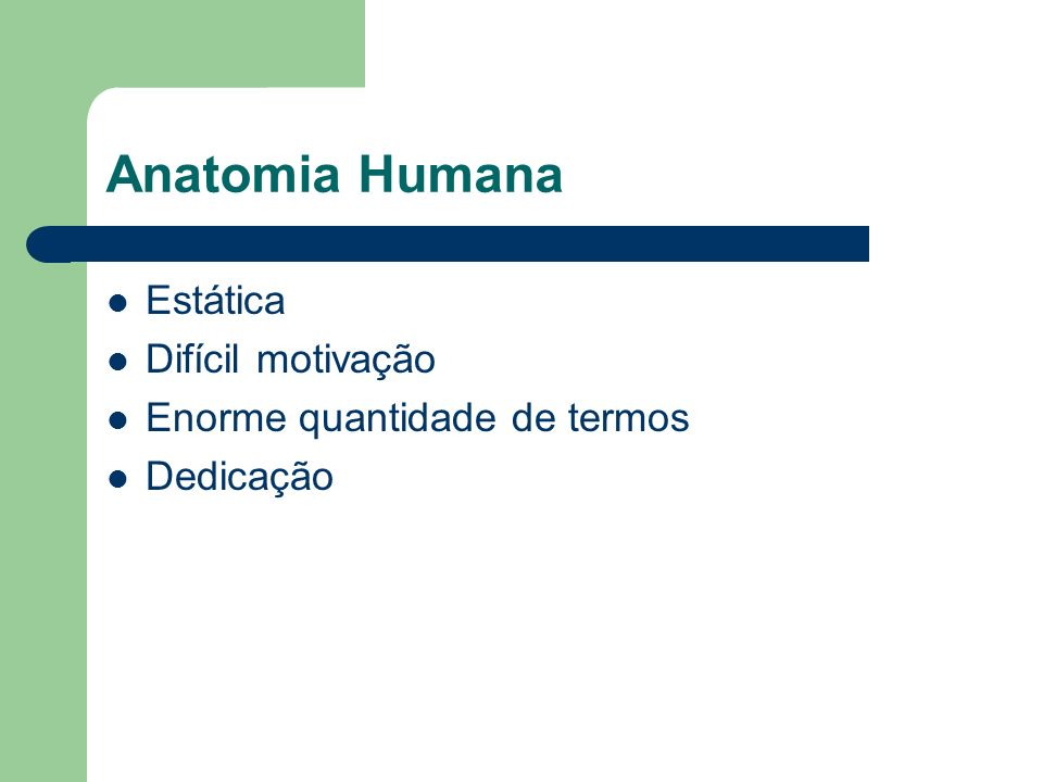 Anatomia Humana Estática Difícil motivação Enorme quantidade de termos