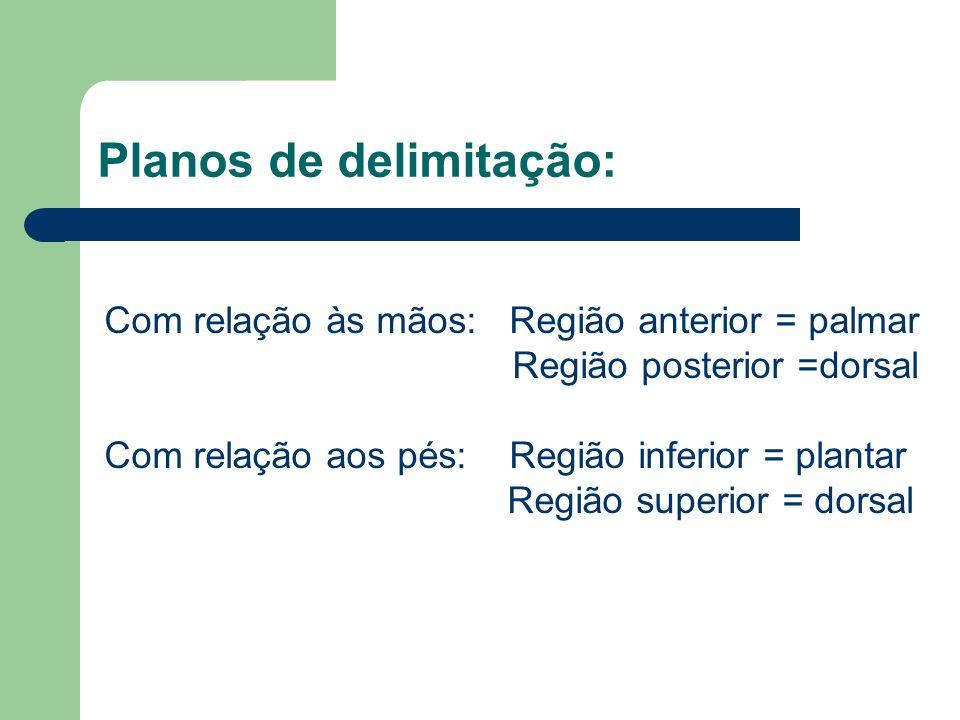 Planos de delimitação: