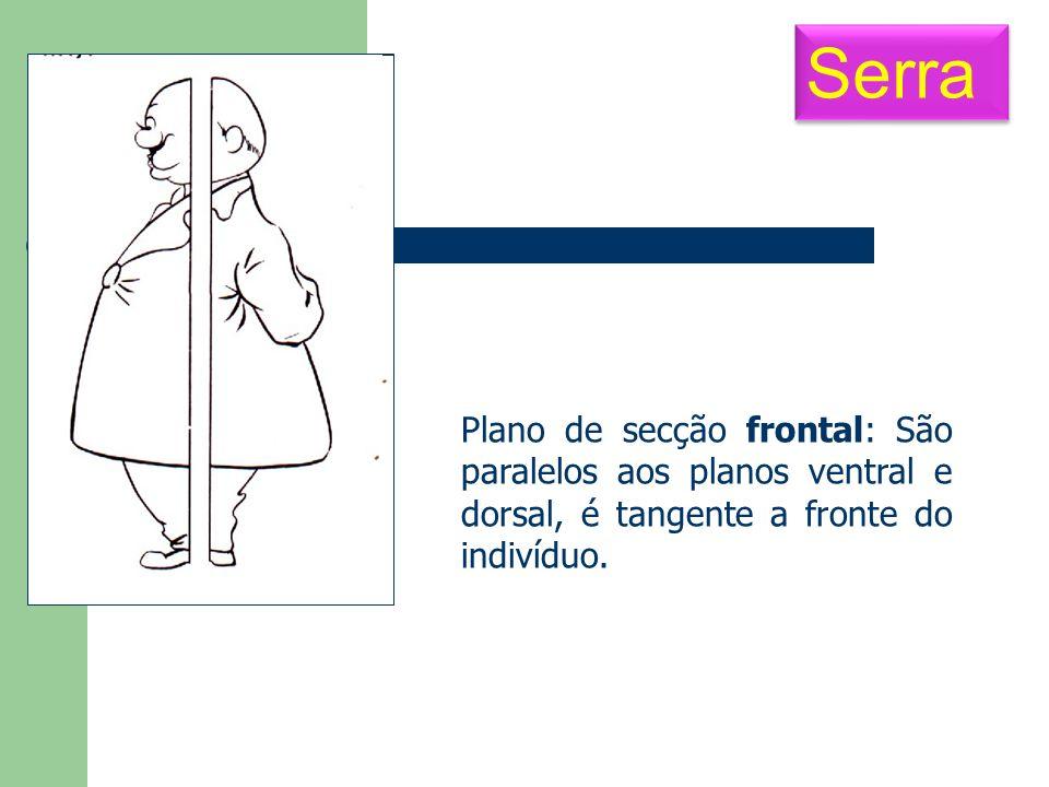 Serra Plano de secção frontal: São paralelos aos planos ventral e dorsal, é tangente a fronte do indivíduo.
