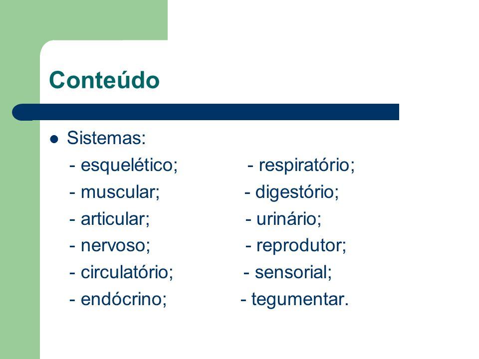 Conteúdo Sistemas: - esquelético; - respiratório;