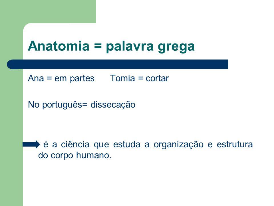 Anatomia = palavra grega