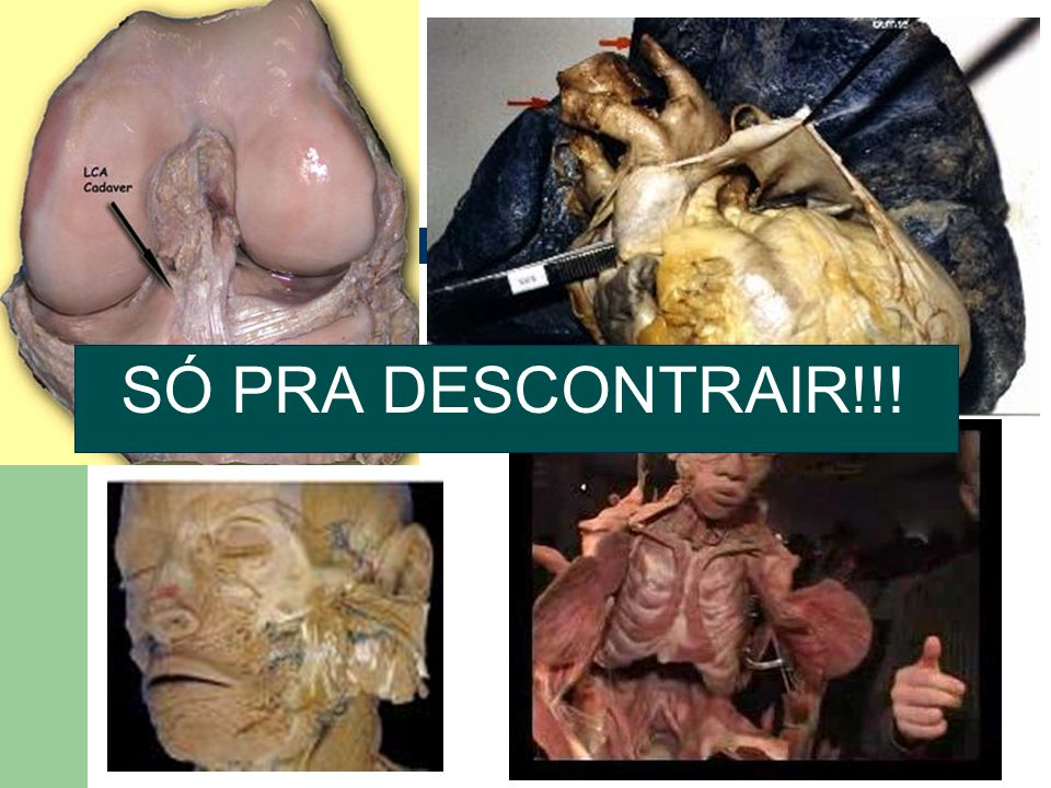 SÓ PRA DESCONTRAIR!!!