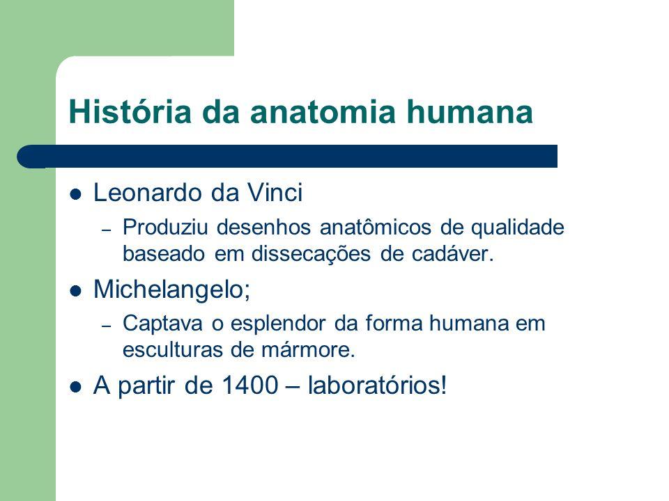 História da anatomia humana