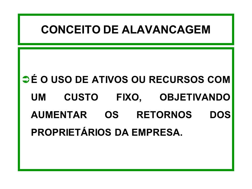 CONCEITO DE ALAVANCAGEM