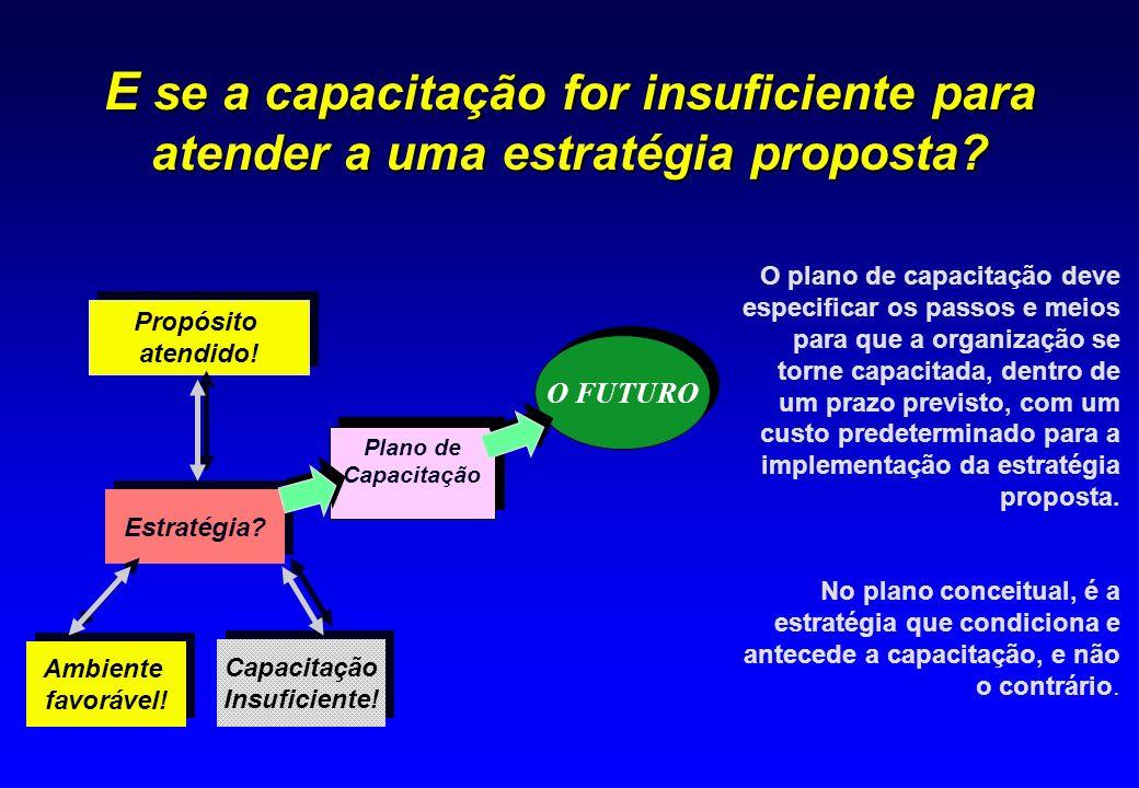 E se a capacitação for insuficiente para atender a uma estratégia proposta