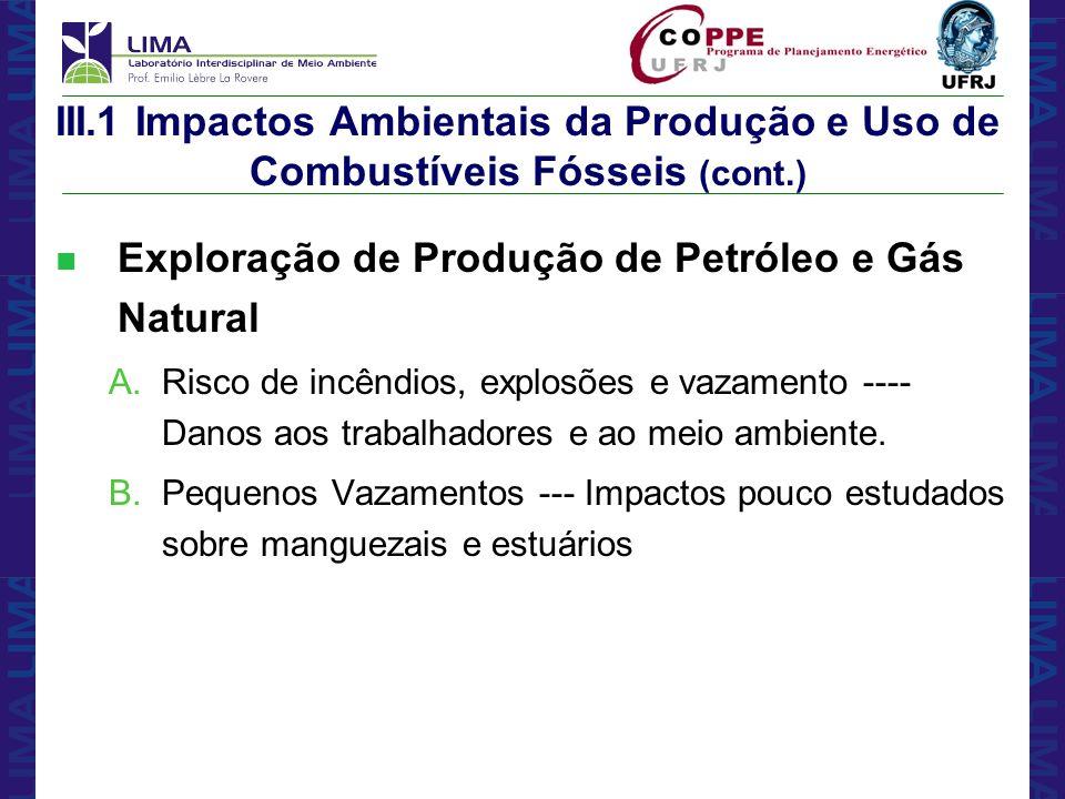 Exploração de Produção de Petróleo e Gás Natural