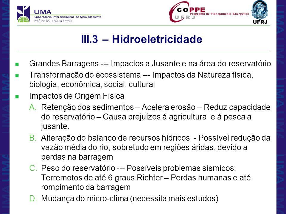 III.3 – Hidroeletricidade
