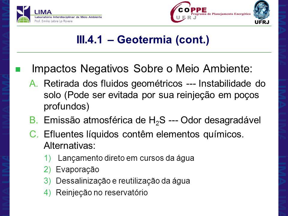 Impactos Negativos Sobre o Meio Ambiente: