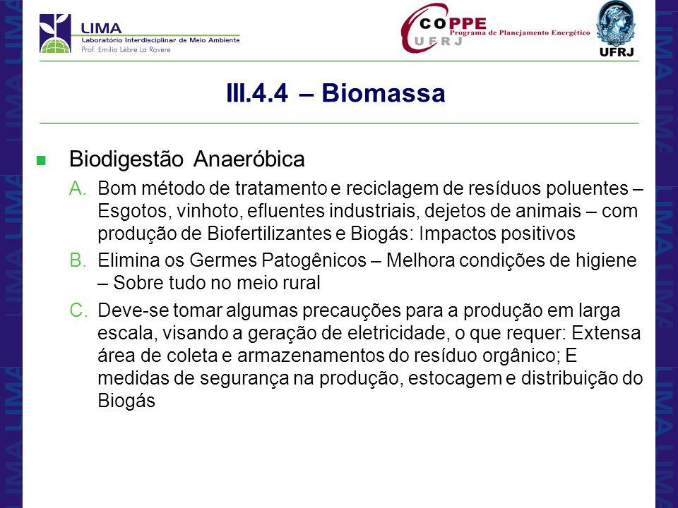 III.4.4 – Biomassa Biodigestão Anaeróbica