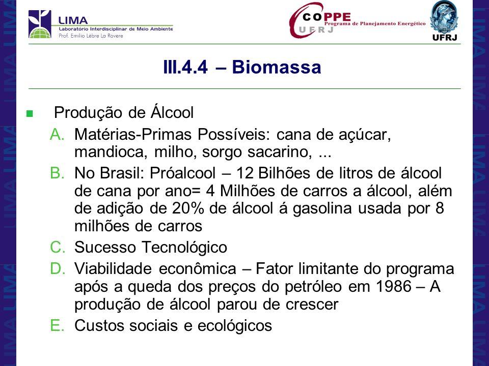 III.4.4 – Biomassa Produção de Álcool