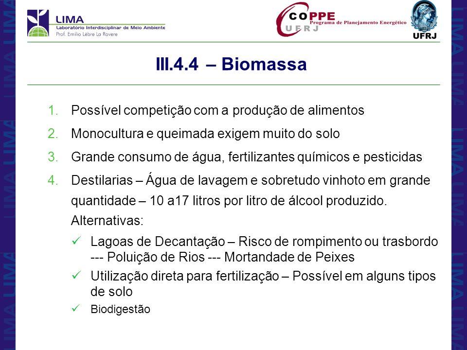 III.4.4 – Biomassa Possível competição com a produção de alimentos