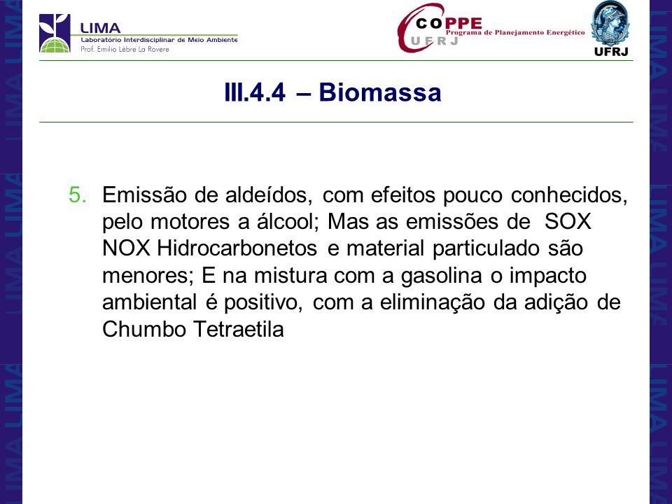 III.4.4 – Biomassa