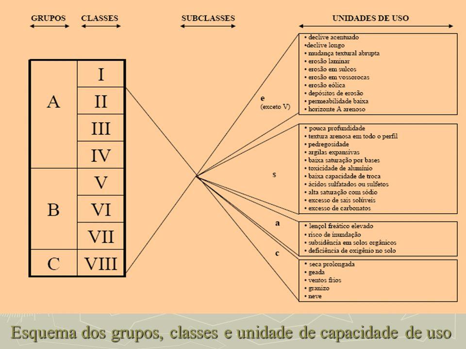 Esquema dos grupos, classes e unidade de capacidade de uso