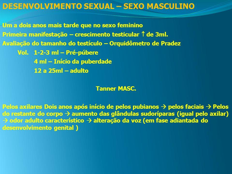 DESENVOLVIMENTO SEXUAL – SEXO MASCULINO