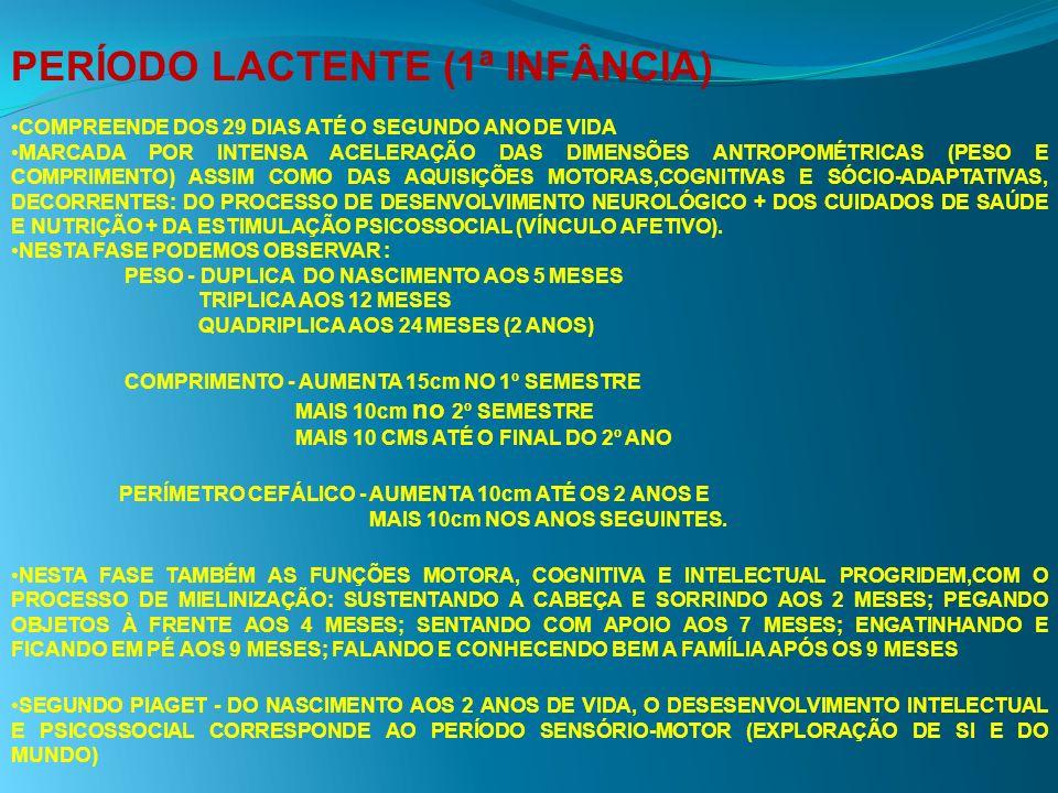 PERÍODO LACTENTE (1ª INFÂNCIA)