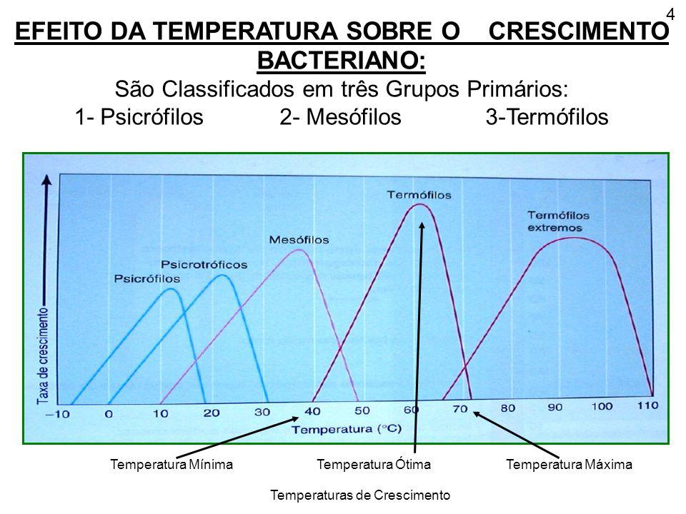EFEITO DA TEMPERATURA SOBRE O CRESCIMENTO BACTERIANO: