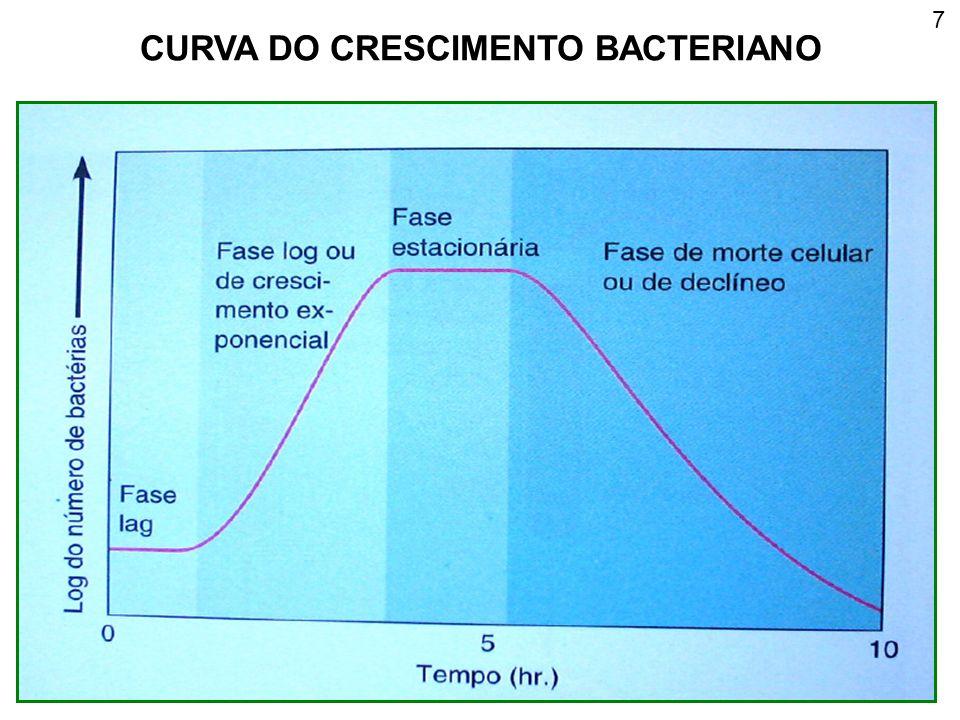 CURVA DO CRESCIMENTO BACTERIANO