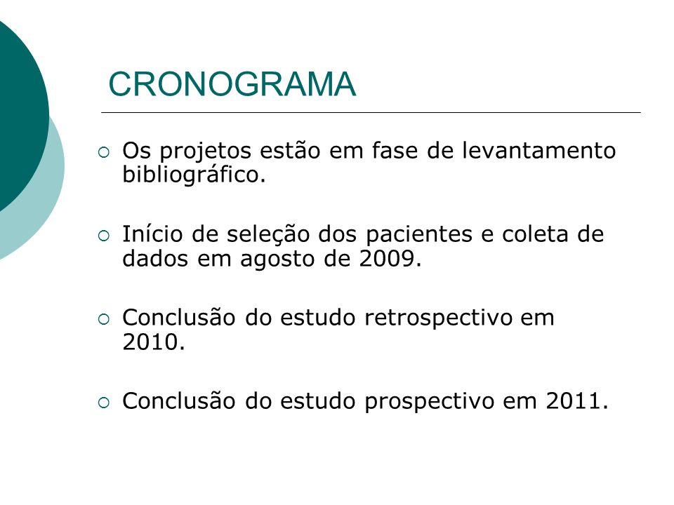 CRONOGRAMA Os projetos estão em fase de levantamento bibliográfico.