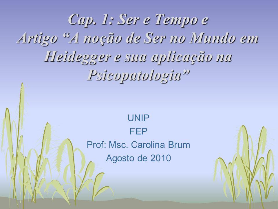 UNIP FEP Prof: Msc. Carolina Brum Agosto de 2010