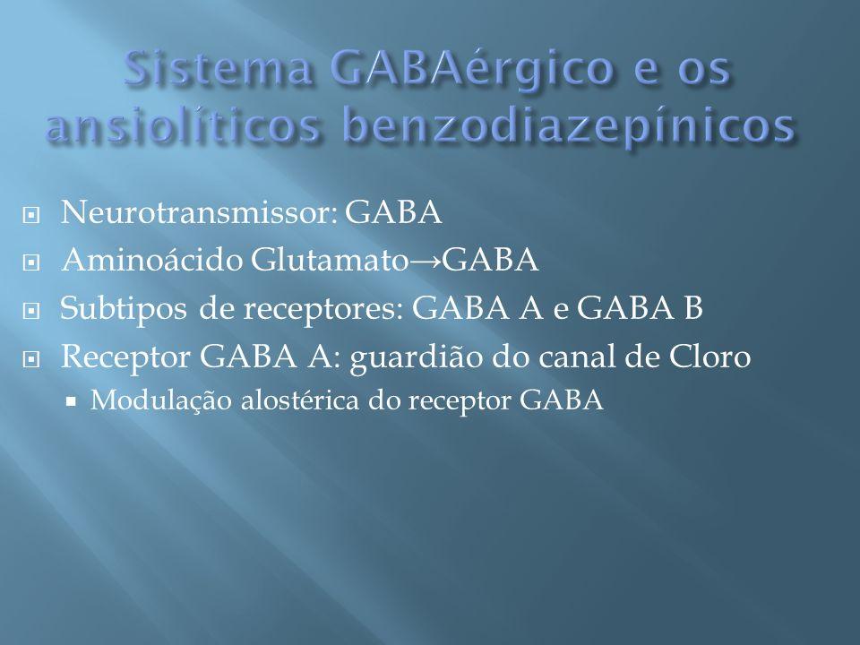 Sistema GABAérgico e os ansiolíticos benzodiazepínicos