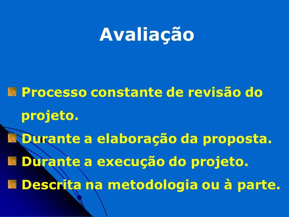 Avaliação Processo constante de revisão do projeto.