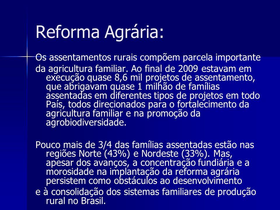 Reforma Agrária: Os assentamentos rurais compõem parcela importante