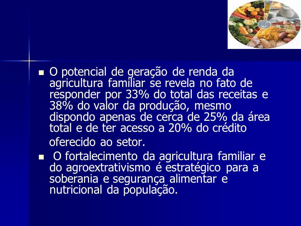 O potencial de geração de renda da agricultura familiar se revela no fato de responder por 33% do total das receitas e 38% do valor da produção, mesmo dispondo apenas de cerca de 25% da área total e de ter acesso a 20% do crédito
