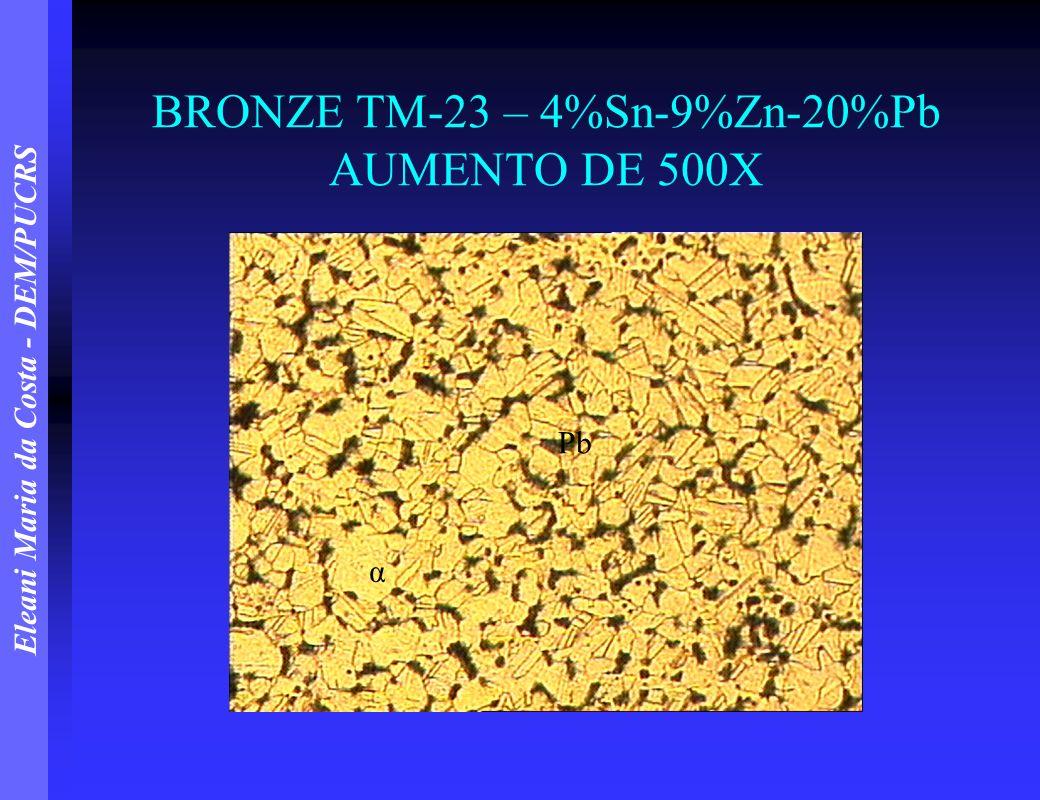 BRONZE TM-23 – 4%Sn-9%Zn-20%Pb AUMENTO DE 500X