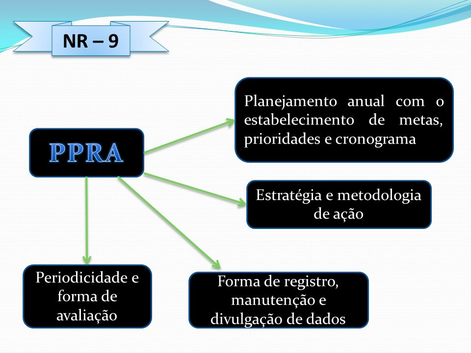 NR – 9Planejamento anual com o estabelecimento de metas, prioridades e cronograma. PPRA. Estratégia e metodologia de ação.