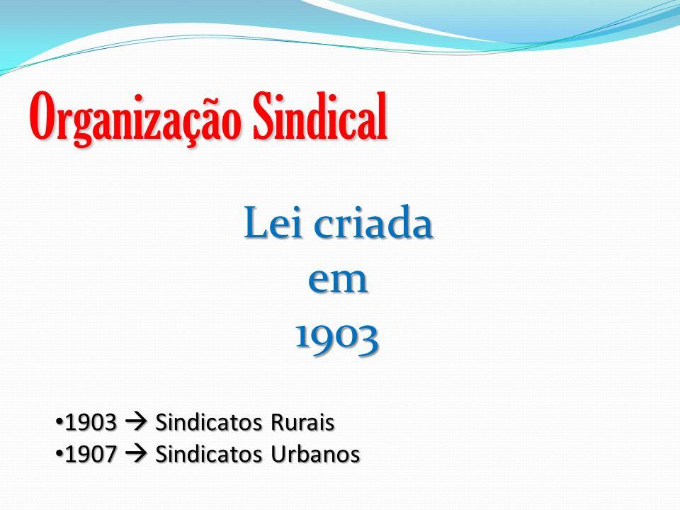 Organização Sindical Lei criada em 1903 1903  Sindicatos Rurais