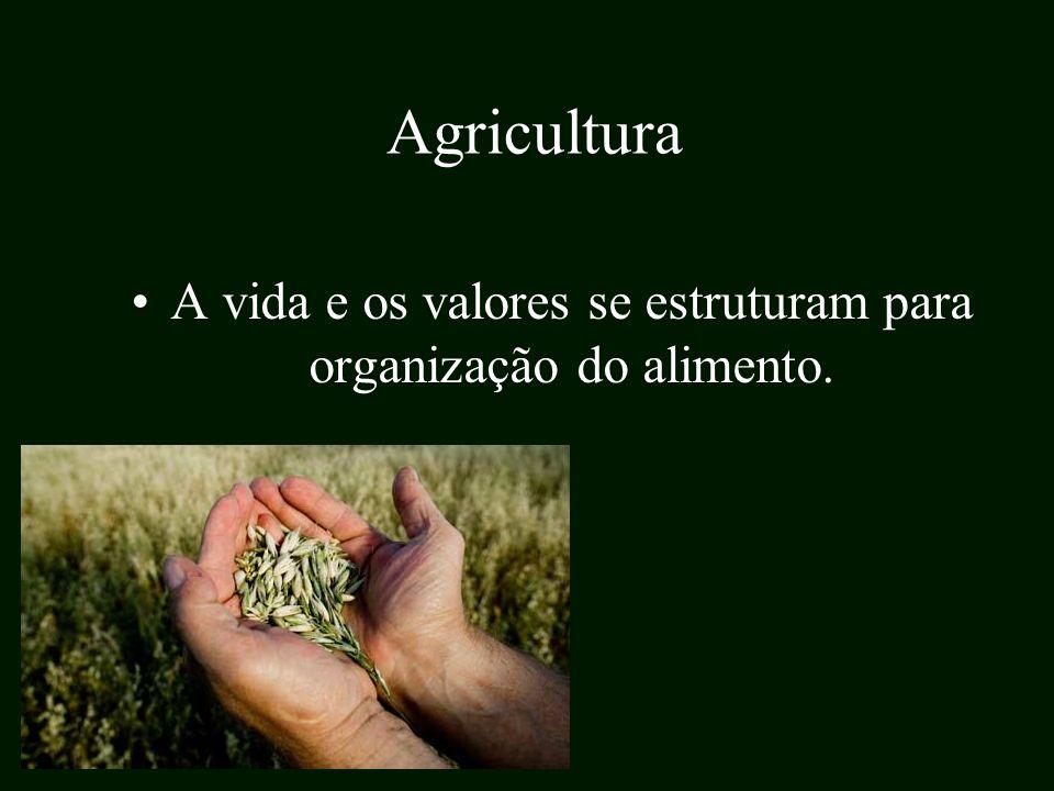 A vida e os valores se estruturam para organização do alimento.