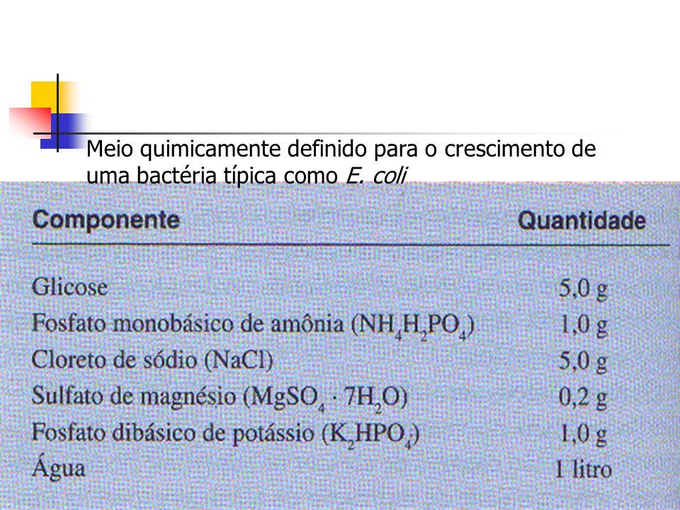 Meio quimicamente definido para o crescimento de uma bactéria típica como E. coli