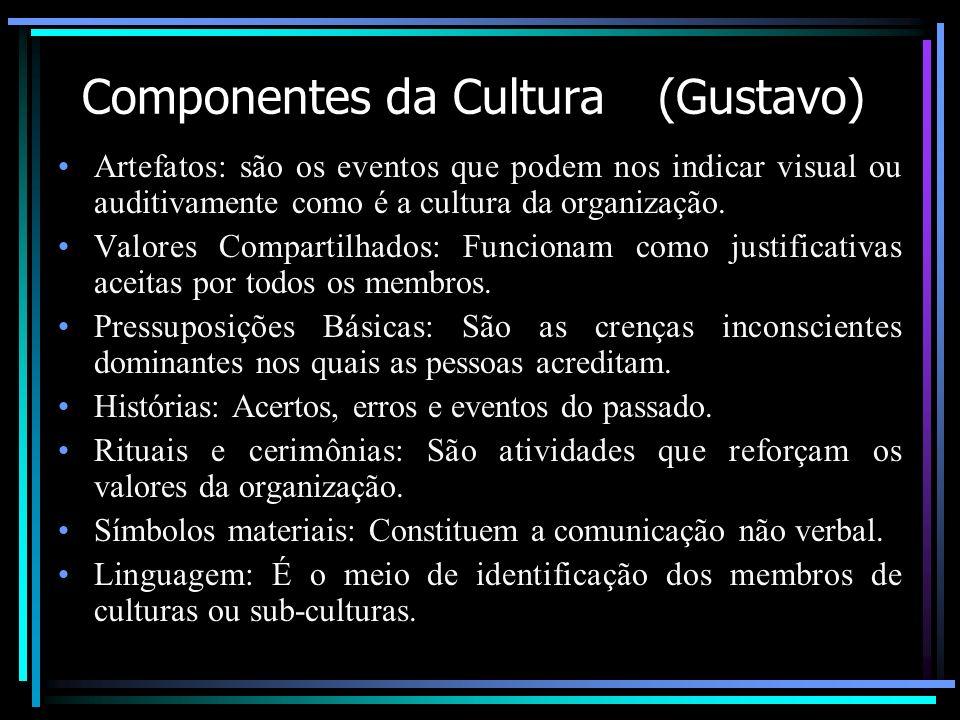 Componentes da Cultura (Gustavo)