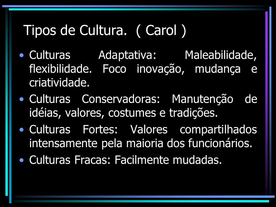 Tipos de Cultura. ( Carol )