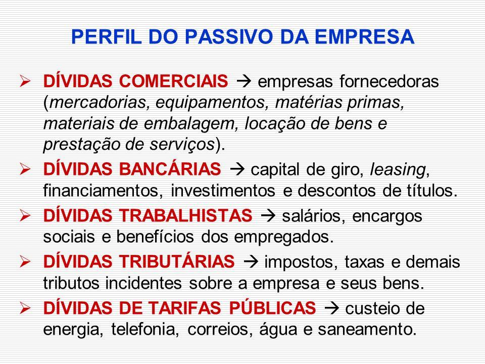 PERFIL DO PASSIVO DA EMPRESA