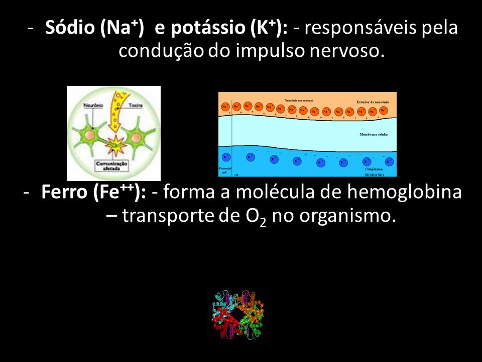 Sódio (Na+) e potássio (K+): - responsáveis pela condução do impulso nervoso.